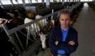 Čudo u Bosanskom Petrovcu: Kako su norveške krave pronašle Jusufovu farmu