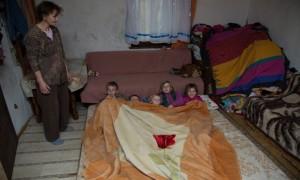 STRAVIČNO Sedmero Hodžića živi u štali