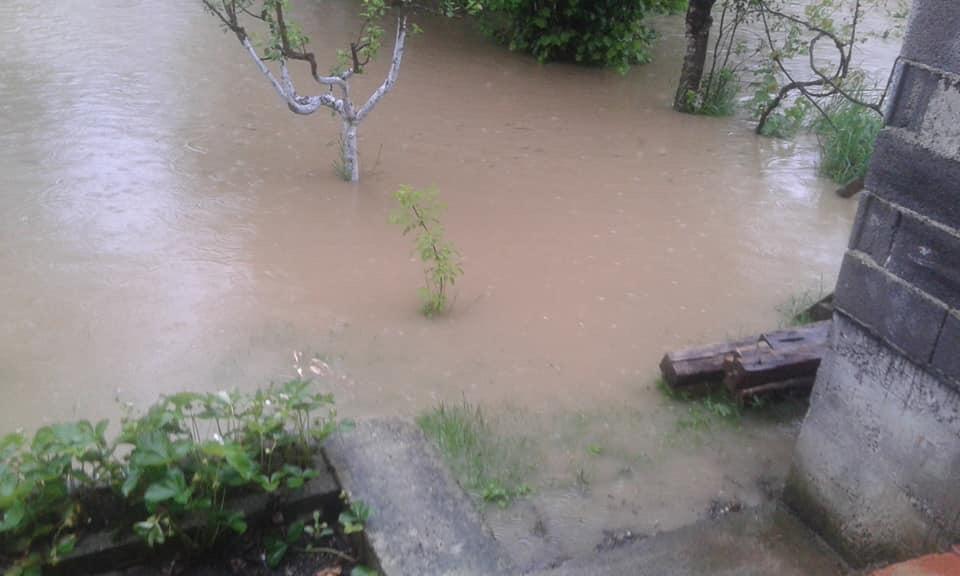 Image result for izlila se rijeka Puharska
